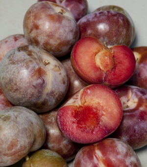 Pluot - Dapple Supreme