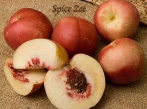 Nectaplum - Spice Zee